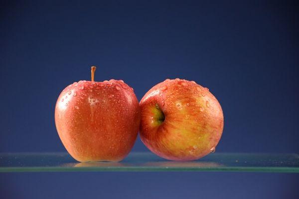 aepfel-mit-taueffekt-morgentau-web