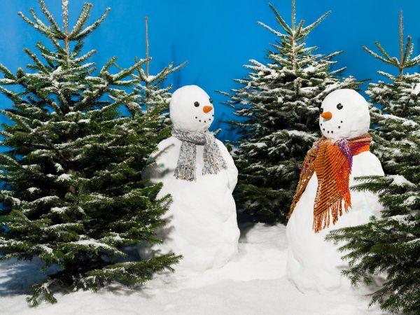 weisser-weihnachtsbaum-dekoschnee